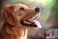 tier hund katze portrait karikatur zeichnen lassen